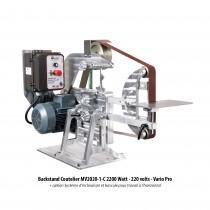 Backstand Coutelier MV2020-1 - Motorisation C : 2200 Watt, 220 volts, avec Variateur Pro + option